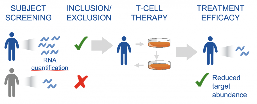 Gene Target Quantification for T cell therapy