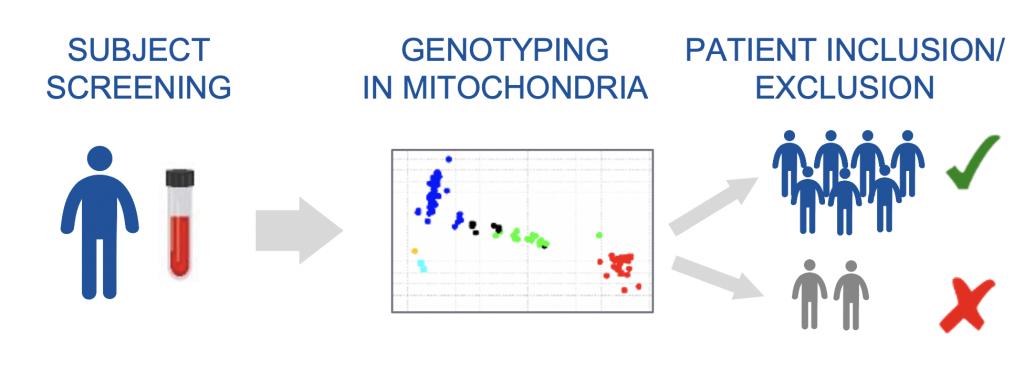 MITOCHONDRIAL SNP GENOTYPING